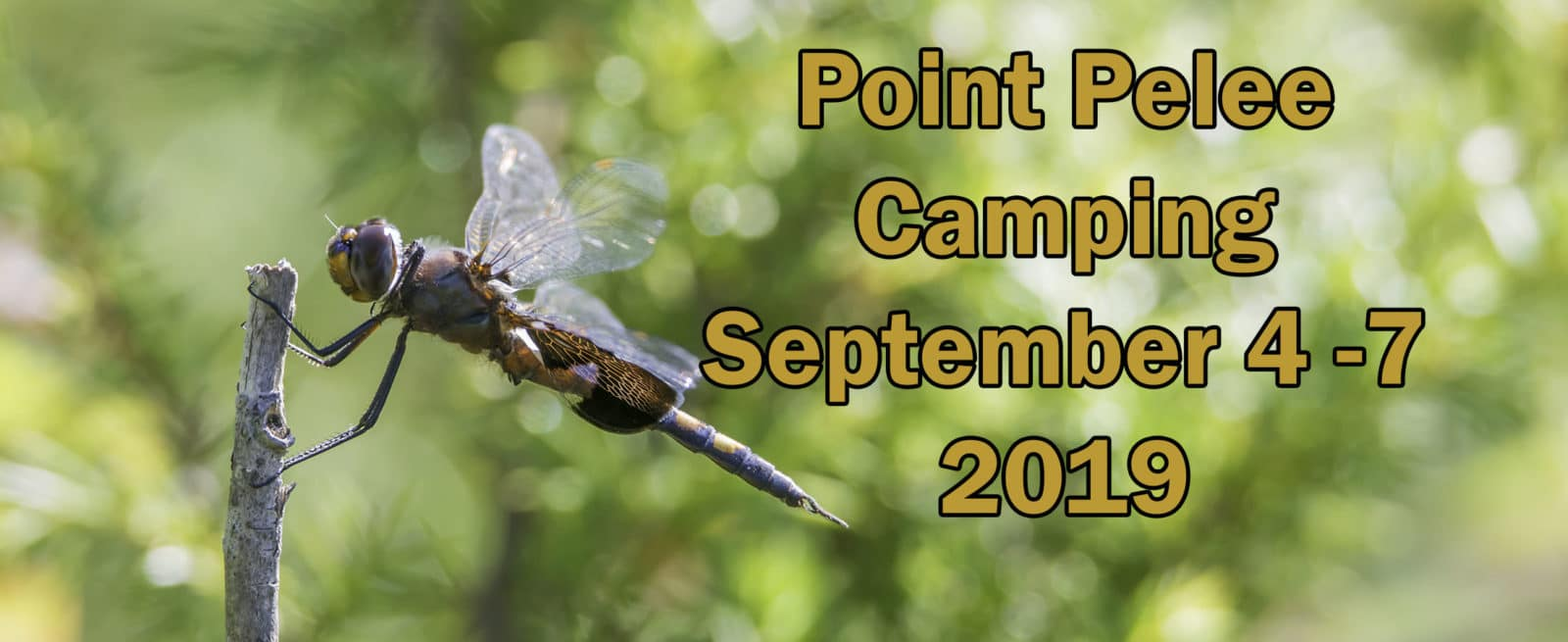Point Pelee Camping September 4-7