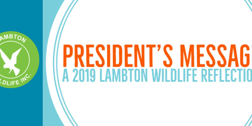 LWI President's Message